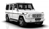 G Class G463 Cross Country Vehicle with 19