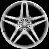 "21"" AMG 5 Twin Spoke wheels A16640121027X25"